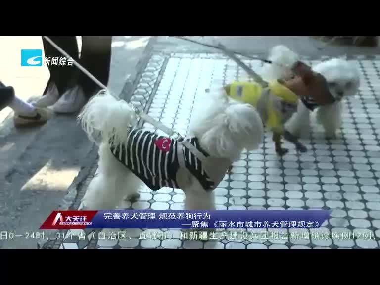 【人大关注】完善养犬管理 规范养狗行为――聚焦《丽水市城市养犬管理规定》