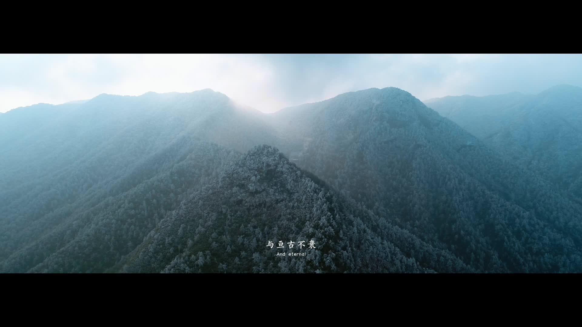 官宣!百山祖国家公园宣传片震撼发布!